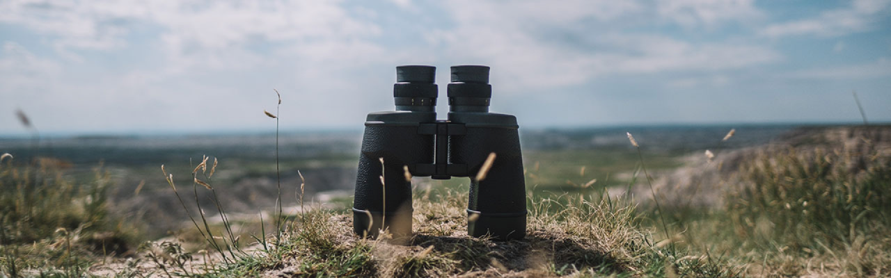 [photo] Black binocular on face down on a grassy hill